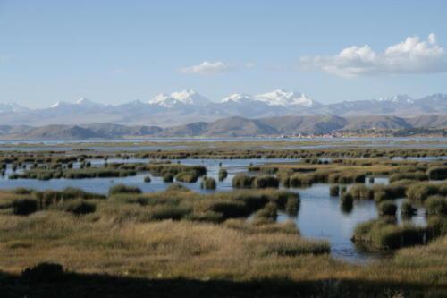 Lac Titicaca- Bolivie