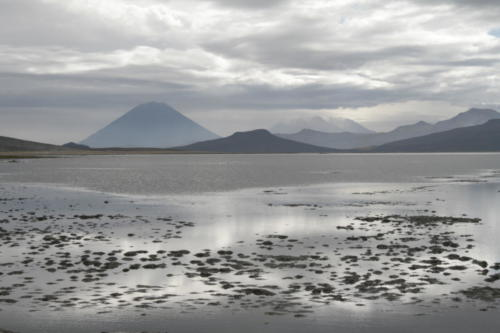 Laguna de salinas- Pérou